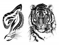 Animals tattoos - Animal tattoo - Tatuaggi animali