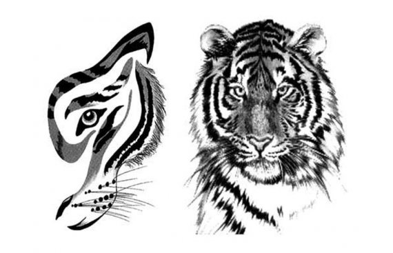 Animals tattoos - Animal tattoo - Tatuaggi animali